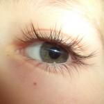 5_Sinne_Auge_Auge1